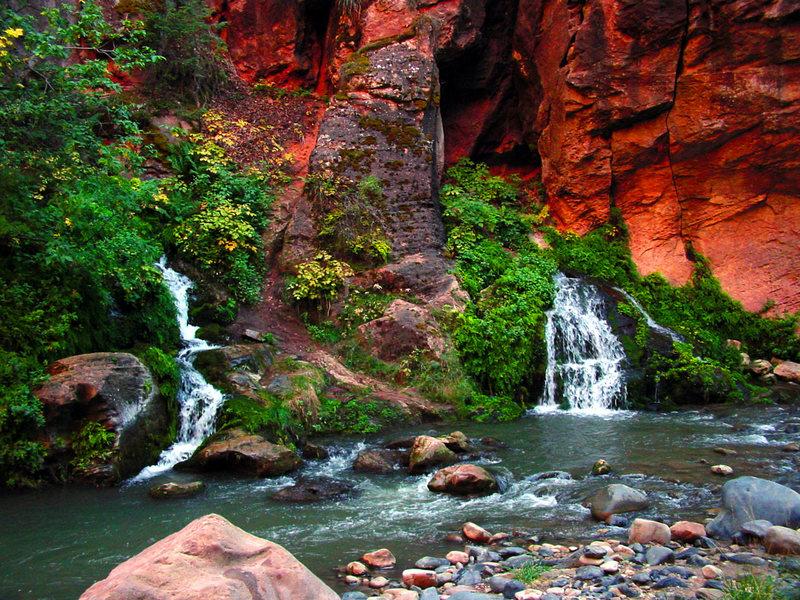 Rock Climbing Photo: Beautiful springs up the Narrows.