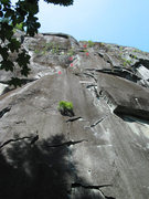 Rock Climbing Photo: Frog Prince (11c) from below. (From rcnw.net.)