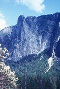 Rock Climbing Photo: Sentinel Rock.
