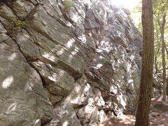Rock Climbing Photo: White Rocks Acre Main Wall.