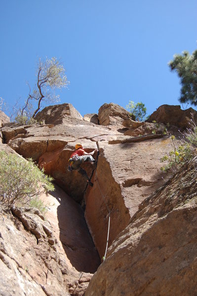 Rock Climbing Photo: Monica diabolica