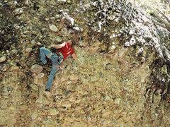 Rock Climbing Photo: Jason...Lookin serious. (Nikon PL510)