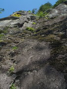 Rock Climbing Photo: Looking up at Leave My Face Alone from the anchor ...