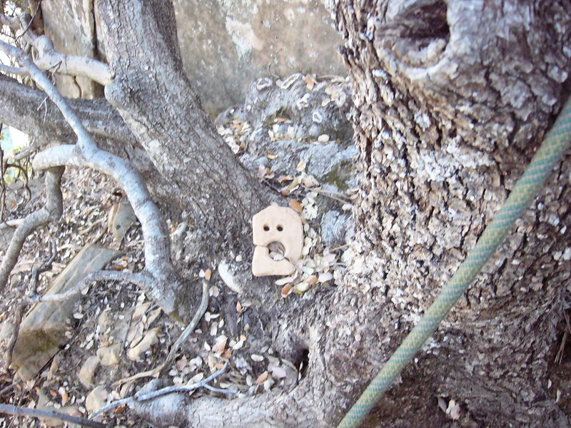 Rock Climbing Photo: Its haunted.  There are corpses in the dry duff be...