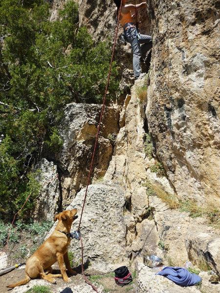 Rock Climbing Photo: On Belay!