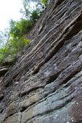 Rock Climbing Photo: Shot of Cindarella