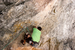 Rock Climbing Photo: clam