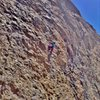 Warming up on Tsing Tao (5.10c) at the Great Wall of China, Central Gorge area.