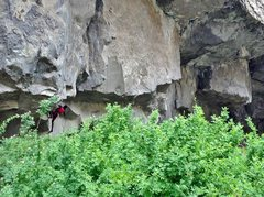 Rock Climbing Photo: Fighting off the performance poop feeling and star...