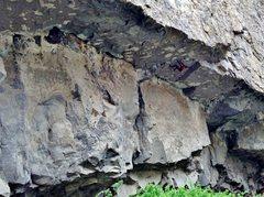 Rock Climbing Photo: On Looney Binge (5.12c) at El Dorado roof, Inner G...