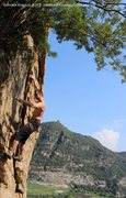 Rock Climbing Photo: Marton Mihaltz makes the clip high on SftC...iSoGW...