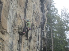 Rock Climbing Photo: Cookie Puss follows the thin black streak in the m...