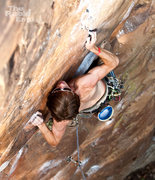 Rock Climbing Photo: Mitch on Crimp Scampi, Memorial Day Weekend, 25 Ma...