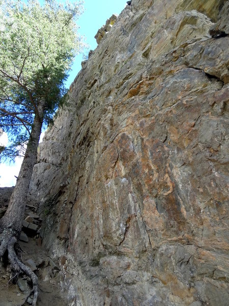 Right to be Wrong climbs the right side of the tree, but on the rock. It ends just right of the two horns atop.