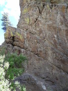 Rock Climbing Photo: Rock the Vote is the right bolt line. Both this an...