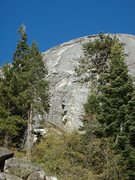 Rock Climbing Photo: From the road.  The first pitch is behind the tree...