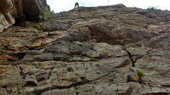 Rock Climbing Photo: Animal World, Boulder Canyon