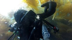 Rock Climbing Photo: Scuba at San Clemente Island. Nitrox Divin.