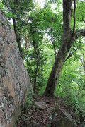 Rock Climbing Photo: If you made it to this rock at about 1300 feet, yo...