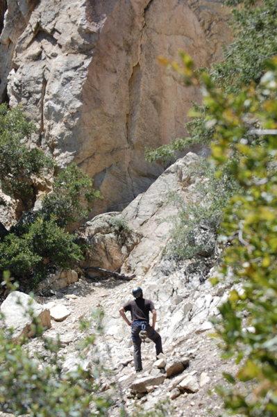 Rock Climbing Photo: More CLC