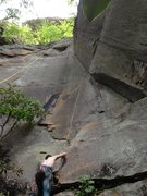 Rock Climbing Photo: The Lubbersis top roping Oberon.