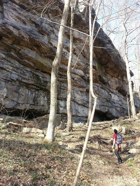 Rock Climbing Photo: Ohiopyle