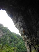 Rock Climbing Photo: Good rainy day climb...the predator