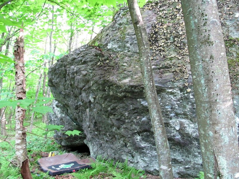 Rock Climbing Photo: Pigs