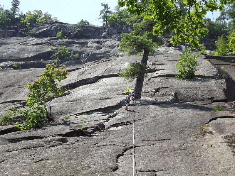 Rock Climbing Photo: Zackary all by himself this time, almost to the tr...