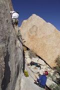 Rock Climbing Photo: Bush Crack, Ranger Station Rock, Lost Horse