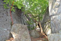 Rock Climbing Photo: Numb Knees