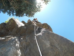 """Rock Climbing Photo: Nearing the top-out """"Owl on the Prowl"""" g..."""