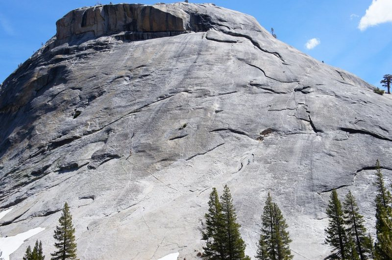 climbers heading to Z tree on right, and two climbers starting up Dike route on left