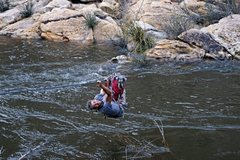 Rock Climbing Photo: One upset schnauzer and high water in Chevelon Can...