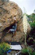 Rock Climbing Photo: Bouldering below The Brickyard.