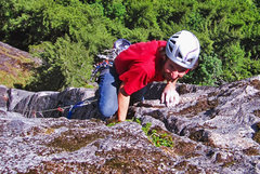 Rock Climbing Photo: Brad finishing P2 on Up'er Zipper (11b).