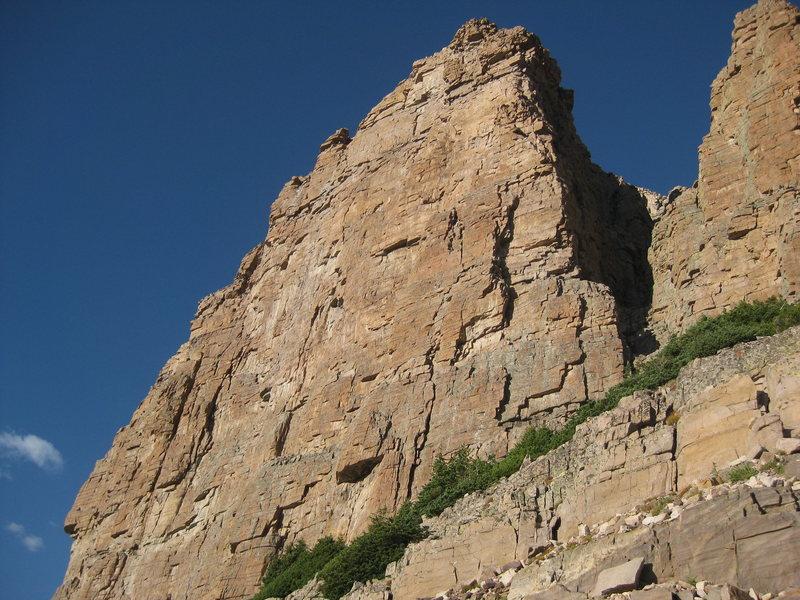Iron Hayden Wall