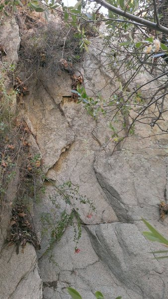 Rock Climbing Photo: Beginning of The Randy Moss. Route slowly curves t...