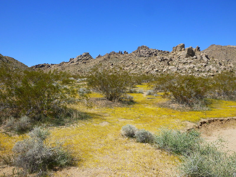 View of the crags from the dirt road. Parking area is just left of center at the base of the rocky hill.