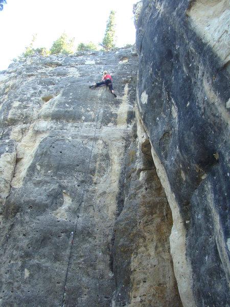 Rock Climbing Photo: Heather feels the pump of the bird's nest pocket o...
