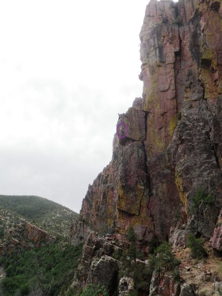The whole route, AMH circled near the top of pitch 1 by Nestor.