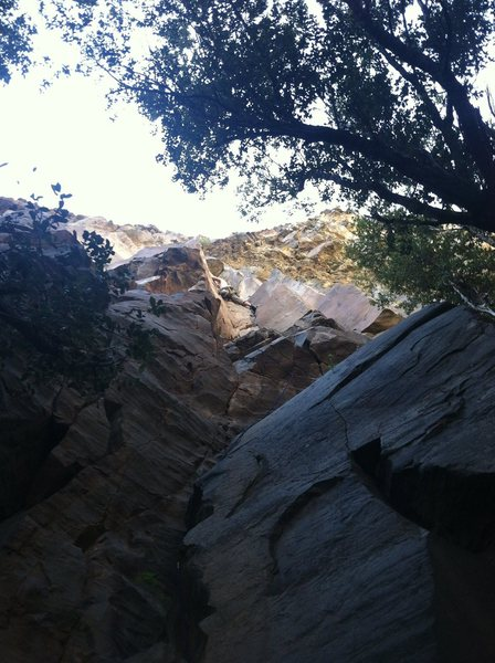 Rock Climbing Photo: Nick S. in the fingers/stemming section during his...