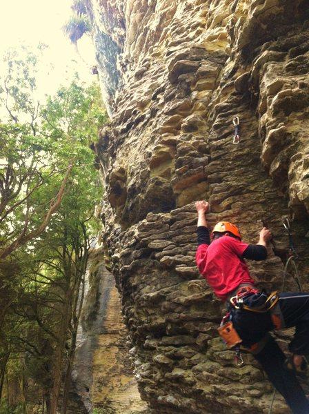 Rock Climbing Photo: Inflatable Gladiators