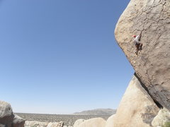 Rock Climbing Photo: Kenton Card on Wild Dream