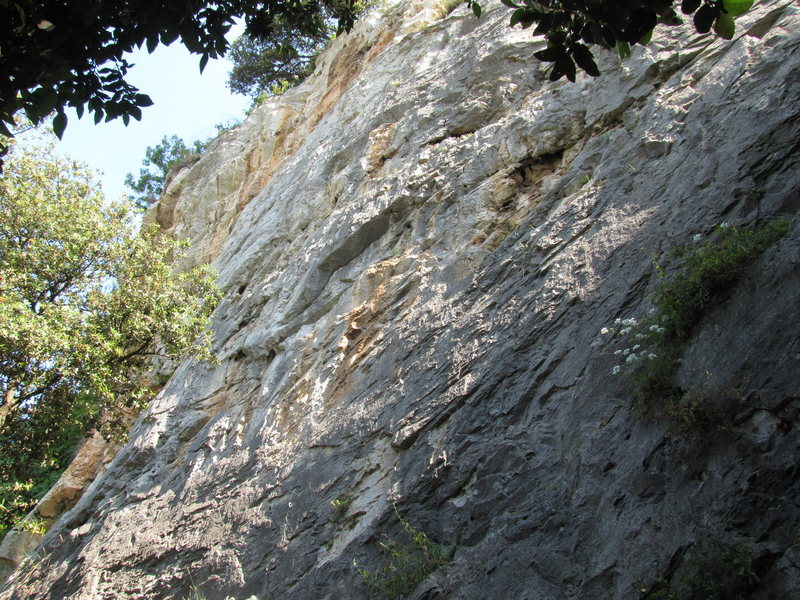 An attempt at photographing the whole crag, but there are some to the right and another hidden one on the left.