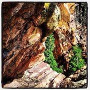Rock Climbing Photo: Bastille Summit Walk-Off