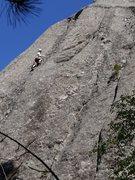 Rock Climbing Photo: The councilman on Evergreen.  June 2013