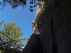 Rock Climbing Photo: Four Little Fishies.
