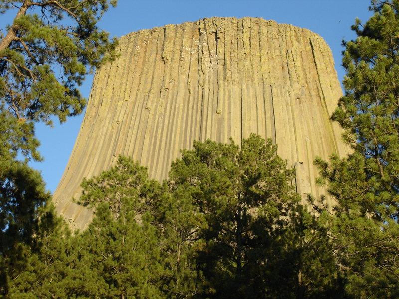 Rock Climbing Photo: ...through the trees