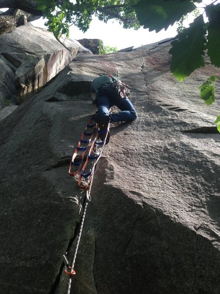 Rock Climbing Photo: First pitch in the new aid ladders